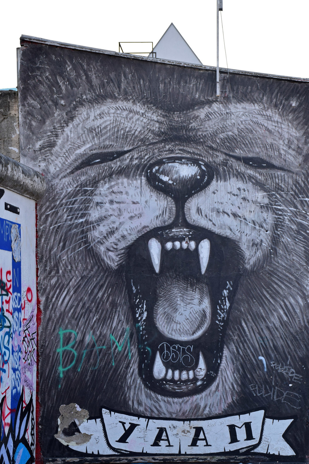 berlin-wall-east-side-gallery-lion.jpg