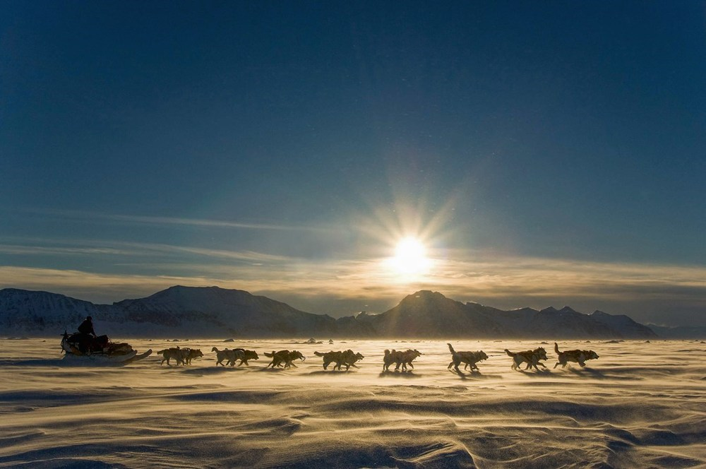 bucket list travel destination greenland dog sledding arctic big five