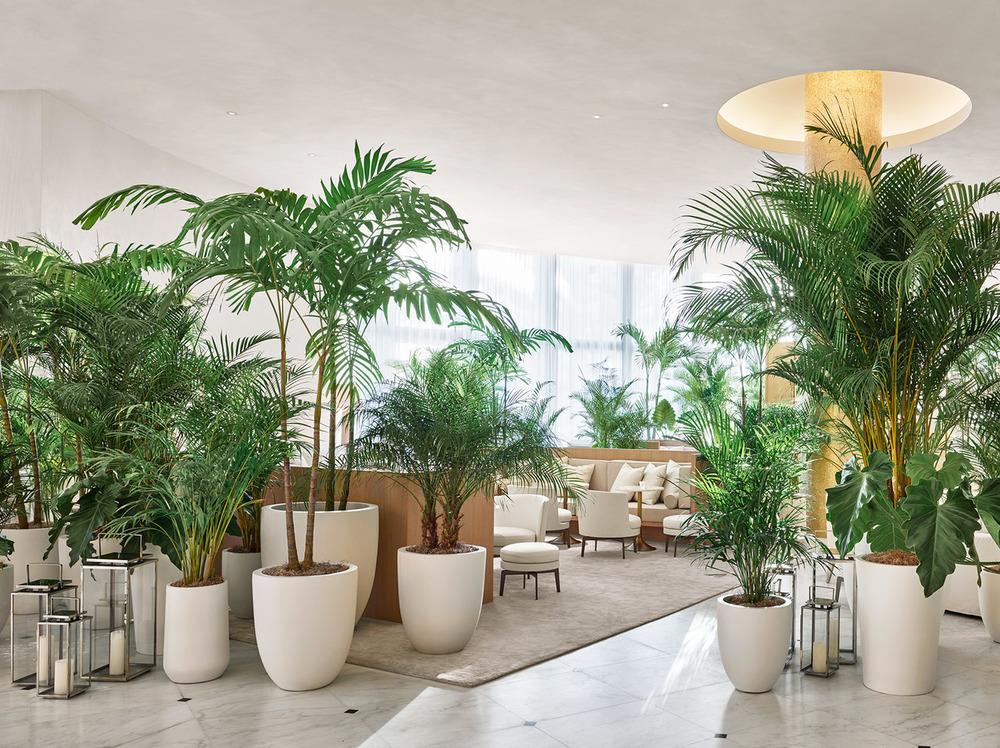 edition-miami-ian-schrager-plants-lobby.jpg