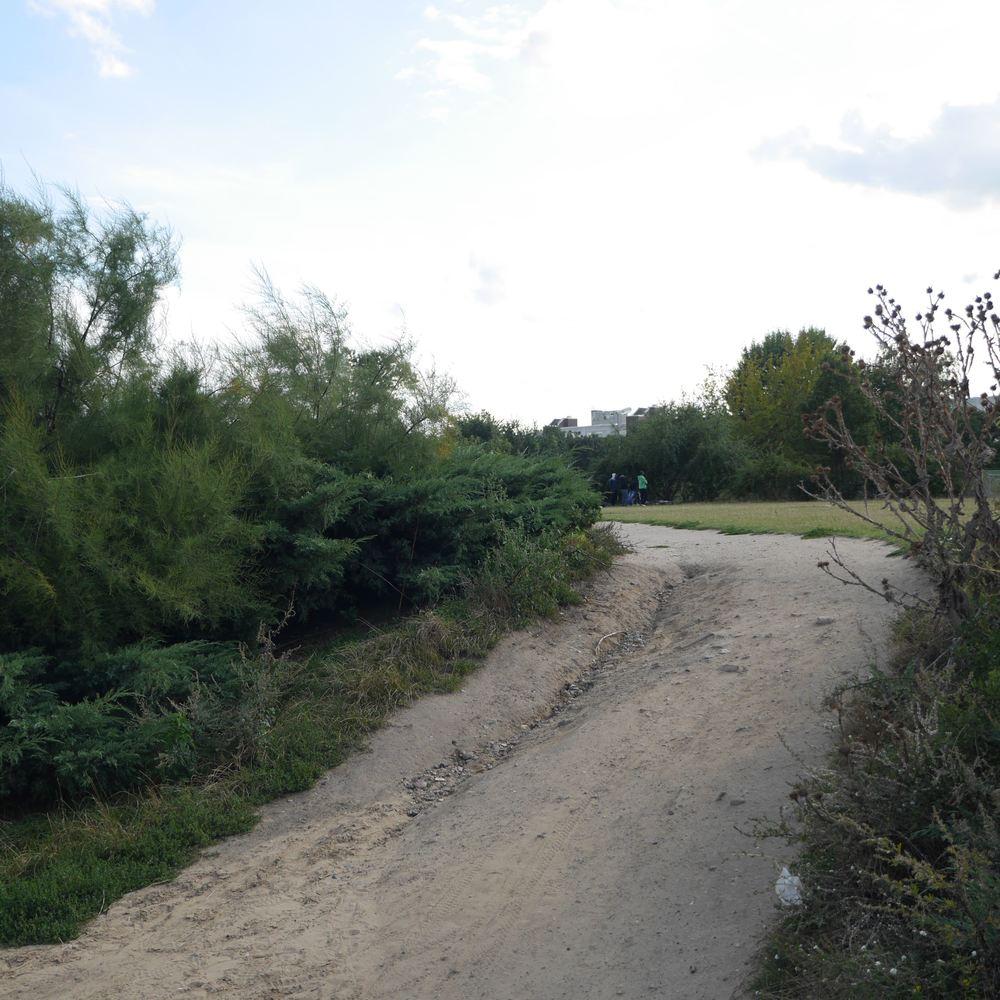 Mauer pk 3.jpg