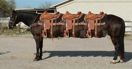Let's make saddle riding simpler