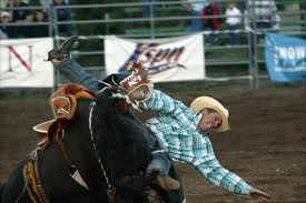 How not to stay in the saddle, rodeo style