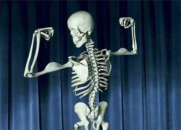 Funny-Skeleton.jpg