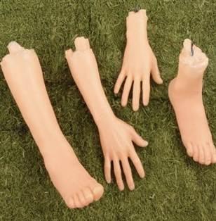 separate limbs.jpg