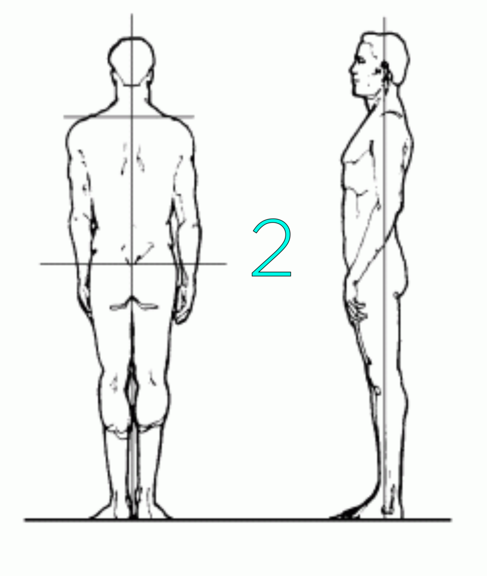 ultimate posture 2.png