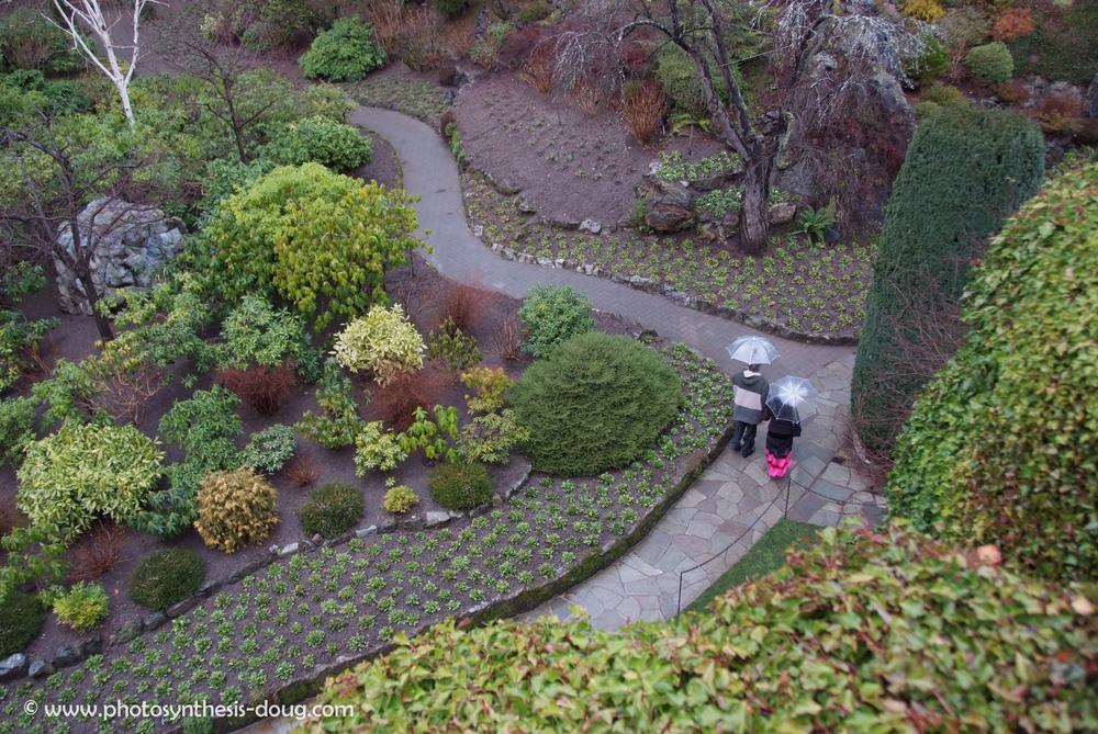 2a Butchart Gardens-1360.jpg
