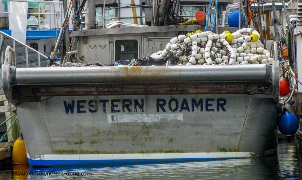 6a western roamer-2675.jpg