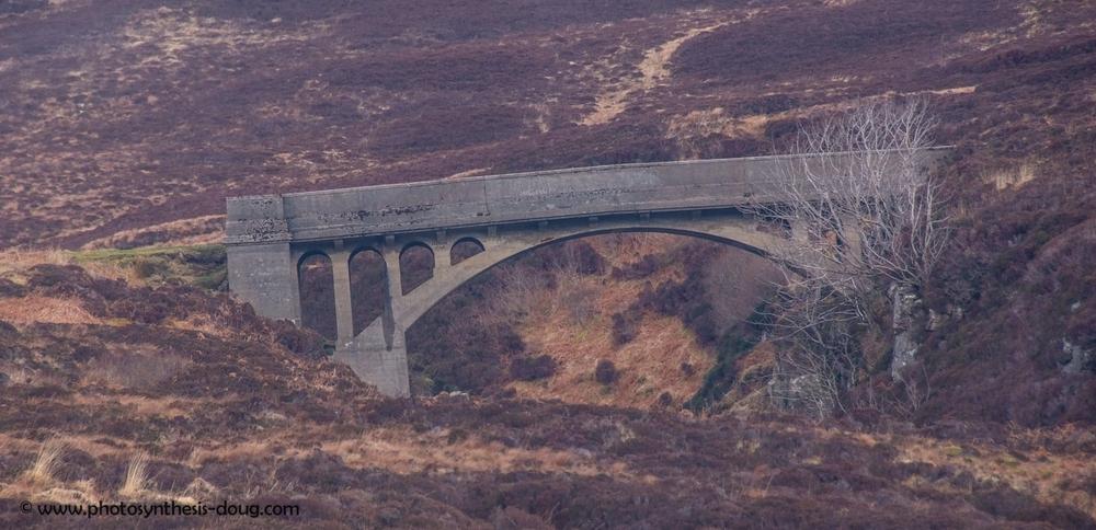 Bridge to Nowhere-2697.jpg