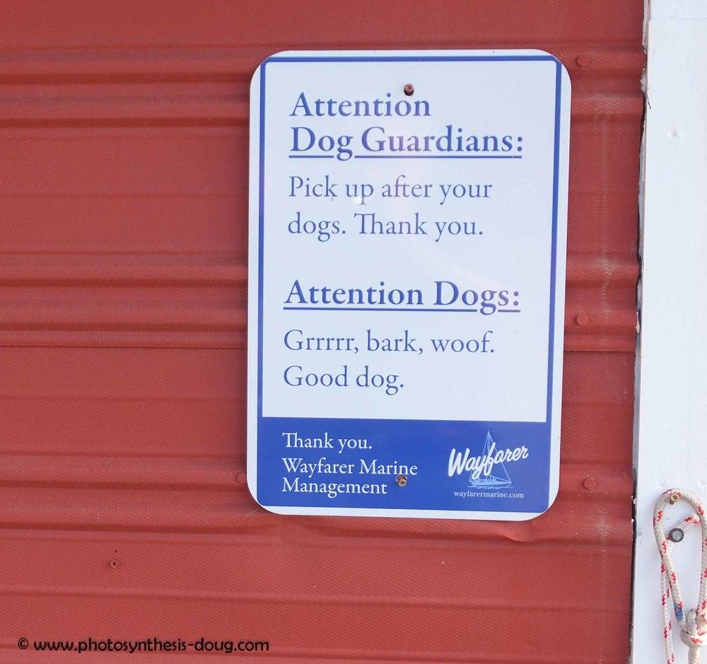 w-dog sign-0742.jpg