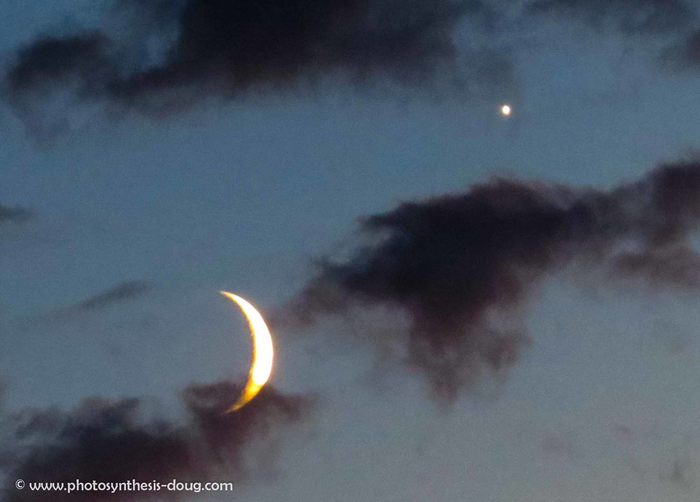 w-Swans Island Venus & moon-3519.jpg