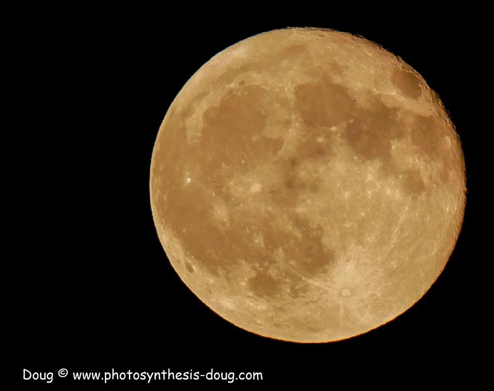 full moon-1110360.JPG