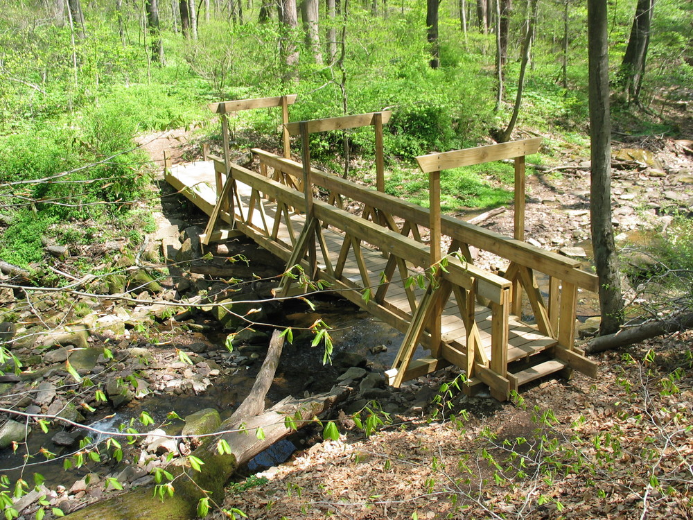 Bridge Spring_20050428_27.JPG
