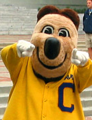 Oski wants YOU!