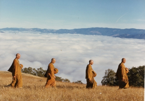 Ajahn Amaro and Monks