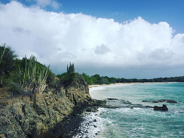 ☀️ + 🌵 + 🌊   🌧  #martinique #beach #bluewater #wednesdayinspo
