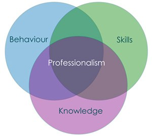 Professionalism Rubric -