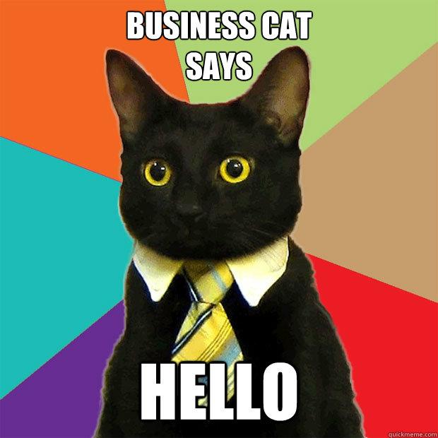 Business-cat-says-hello.jpg