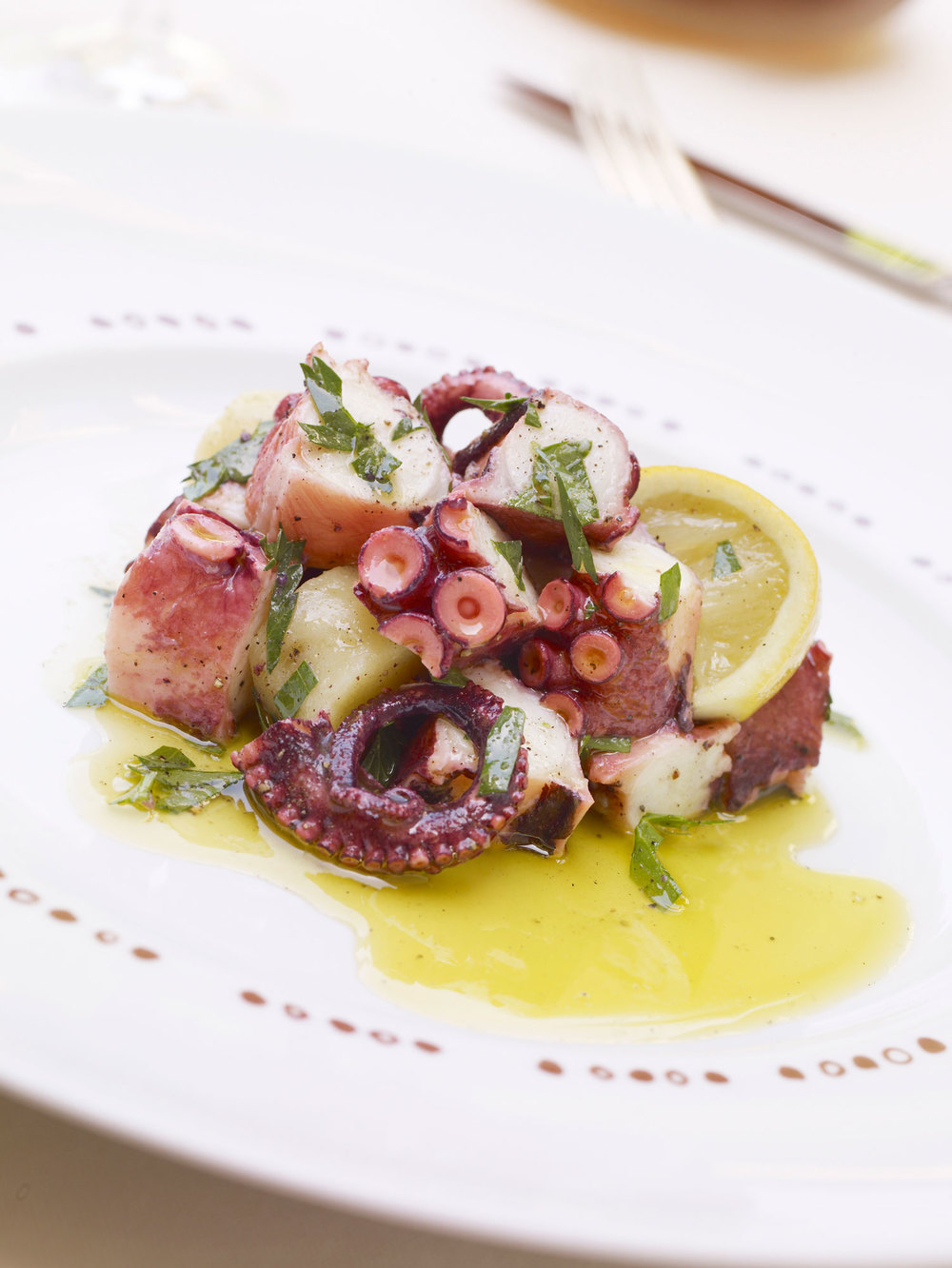 marinated-grilled-octopus.jpg