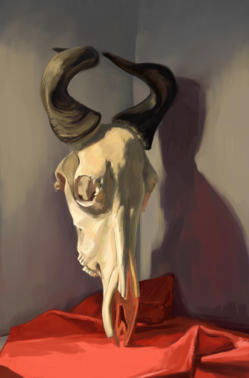 annakoan_skull3.JPG