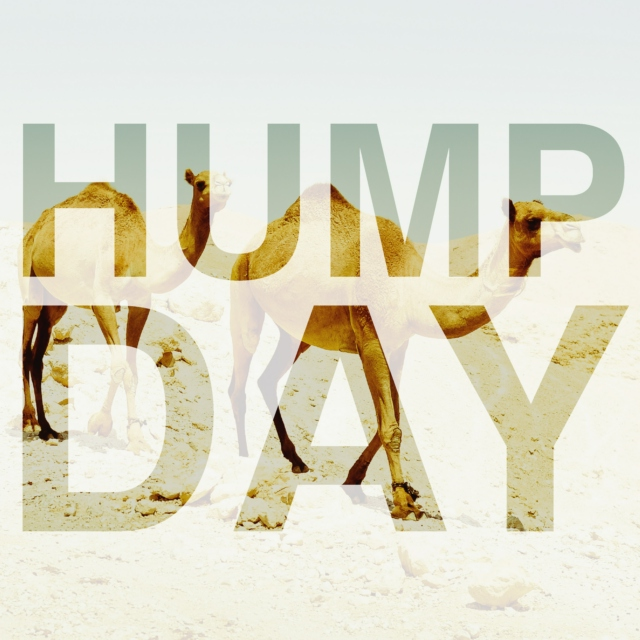 humpday-01-5110.jpg