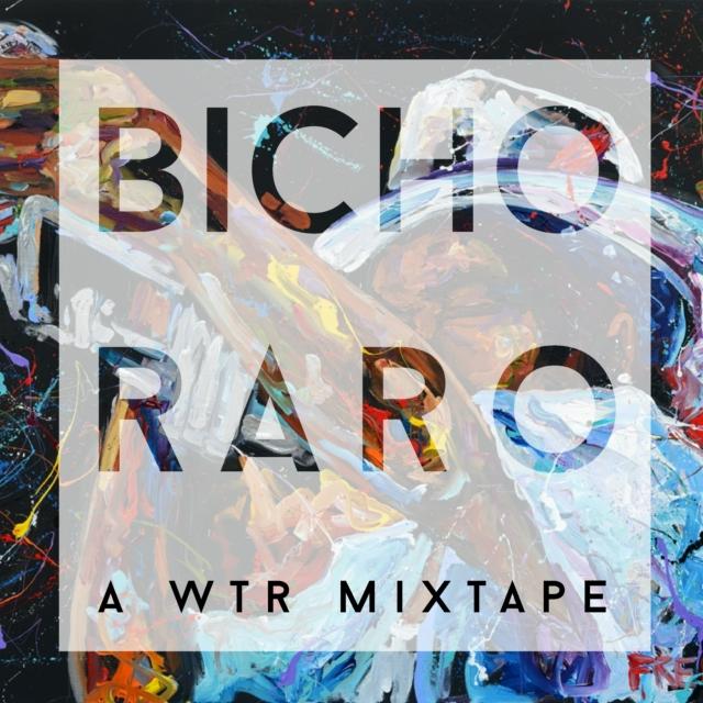 bichoraro-01-3894.jpg