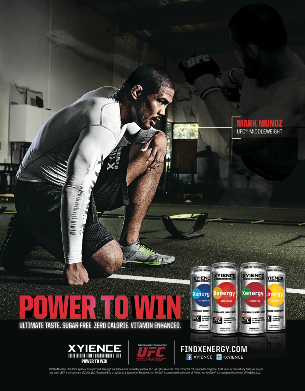 Xyience Ad edit 2013.jpg