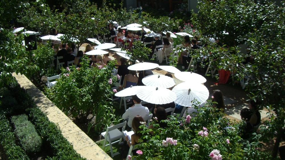 SG imageLong garden guests CIMG1893.JPG
