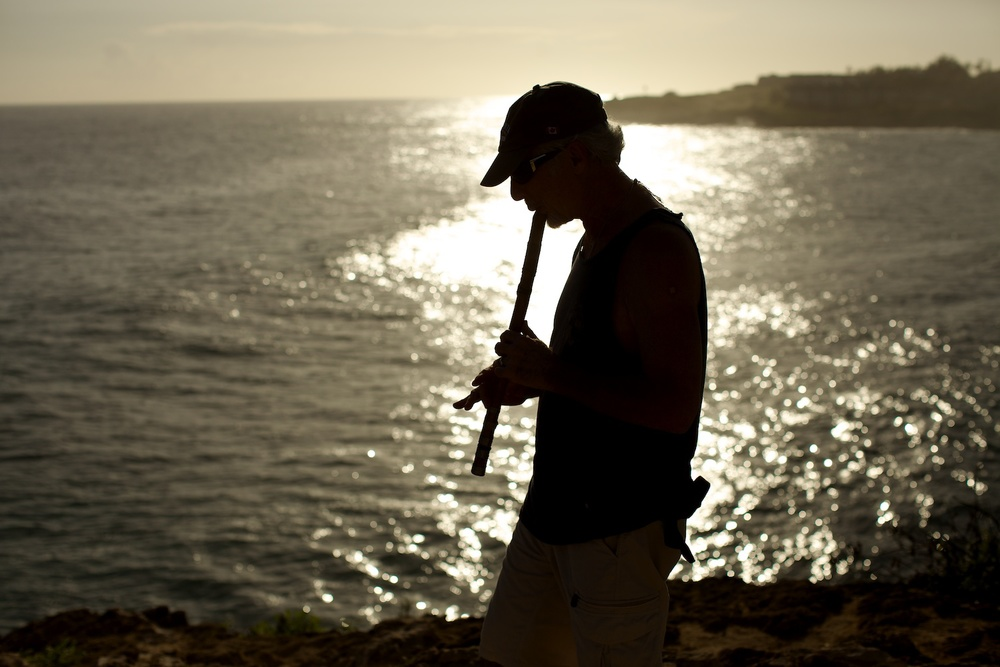 Flute player silhouette