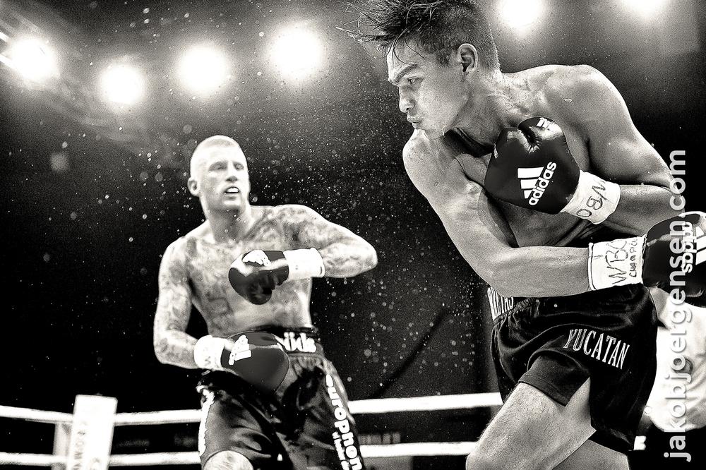 Patrick Nielsen vandt på TKO over mexicaneren José Pinzon.