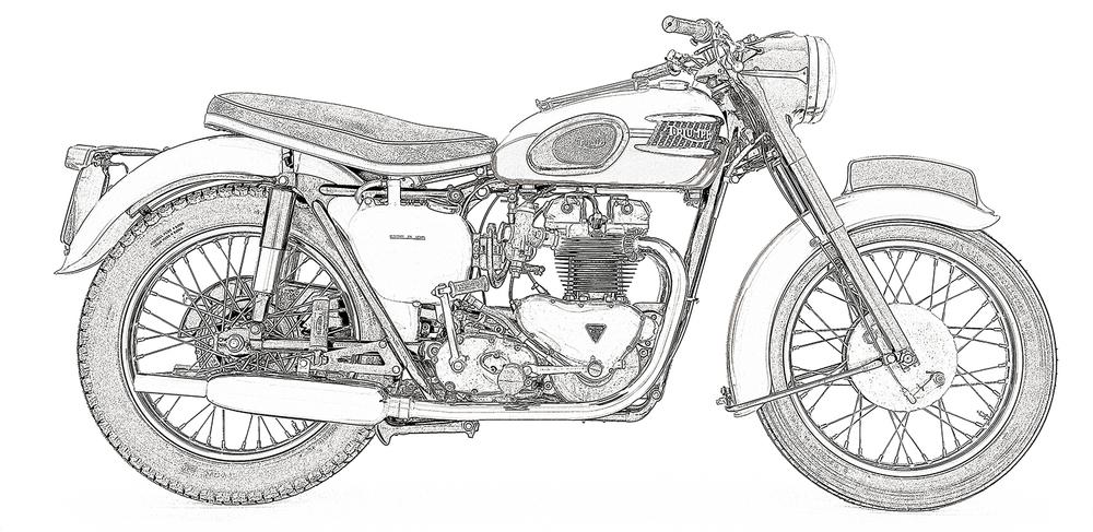 1959 t120 bonne_sketch_sqspc.jpg