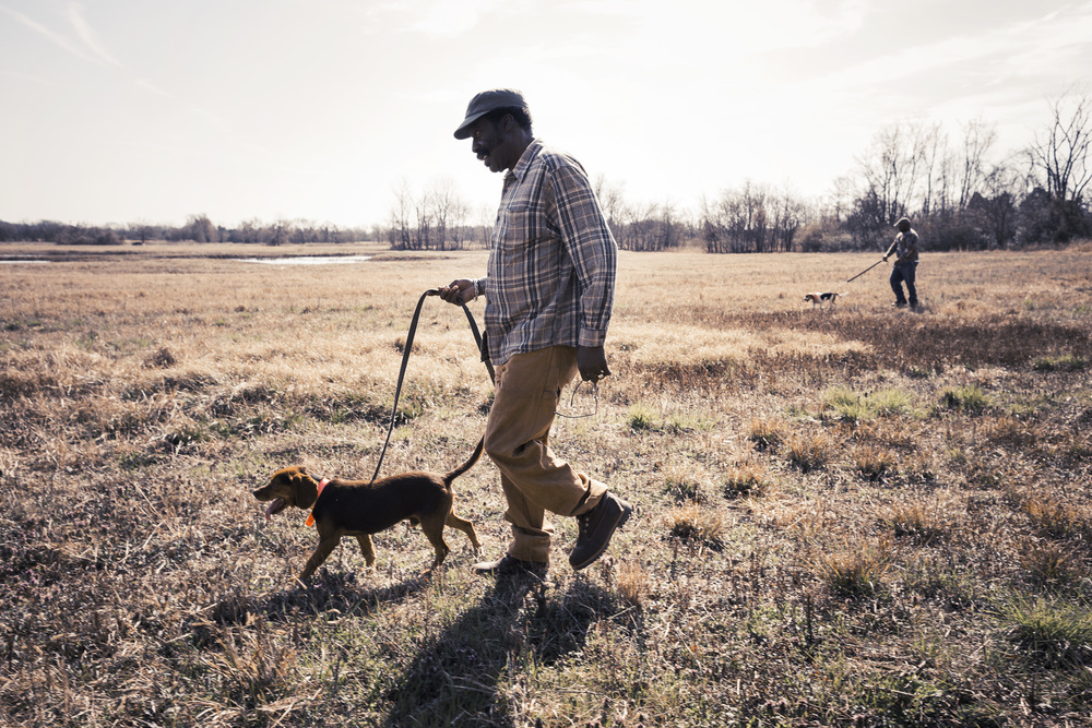 Hunters with Beagles, Wayne Reeves Beagle Hound Field Trials, Tamara Reynolds