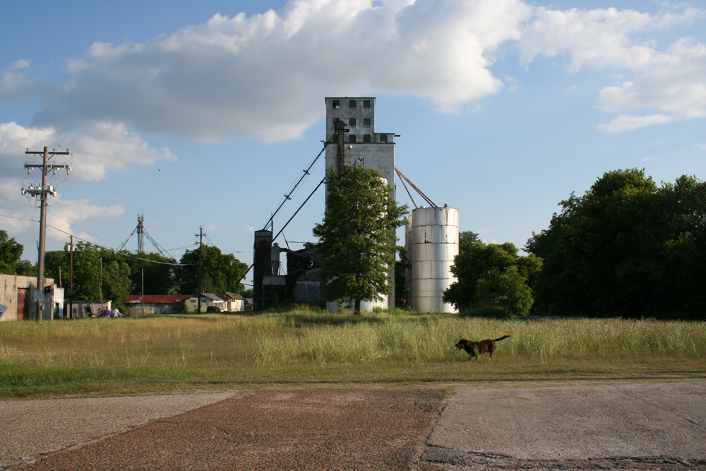 Grain Elevator, Drew, Sunflower County, Miss. Photo by Maude Clay.