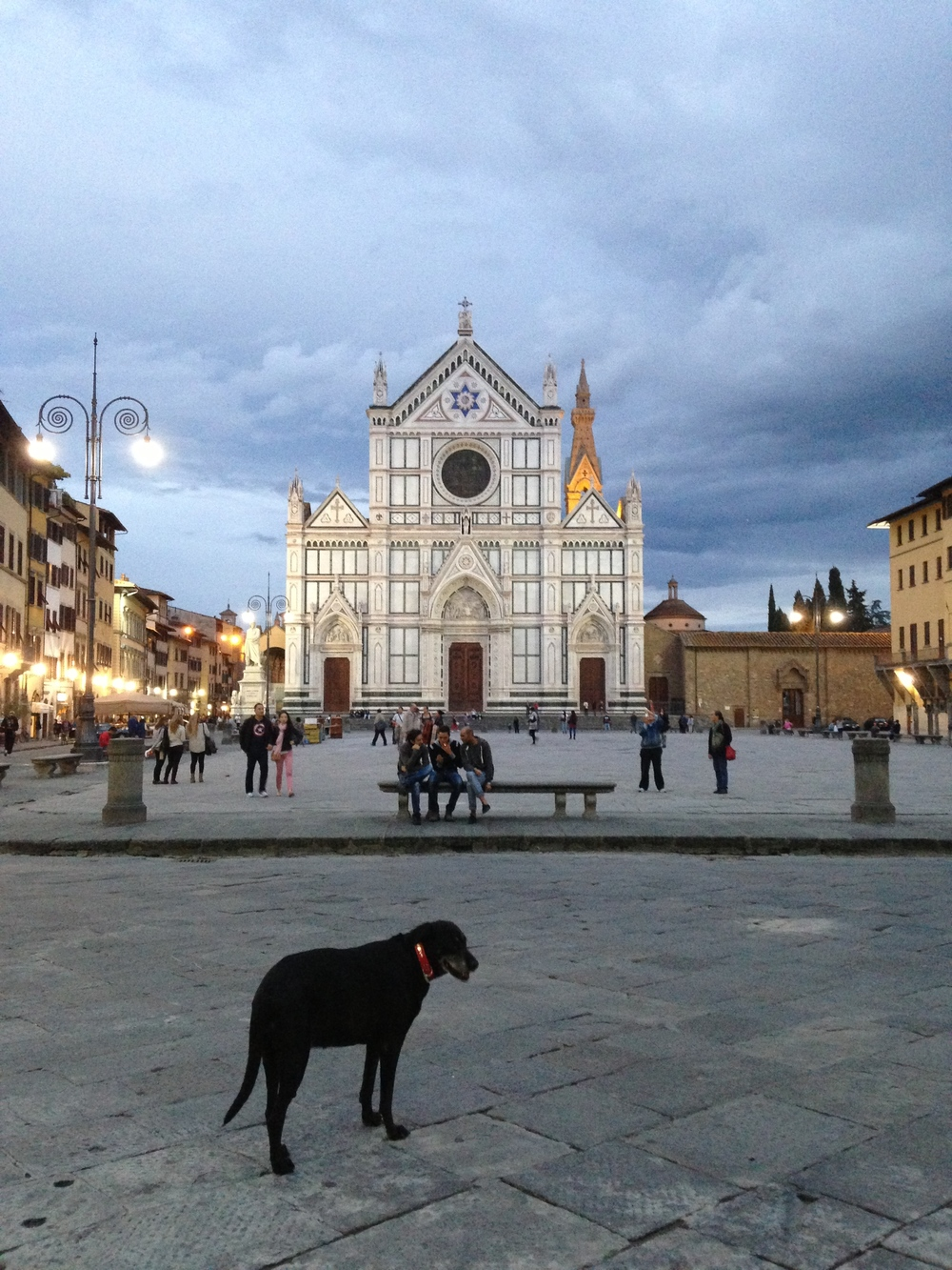 Dog in the piazza, by Mary Warner.