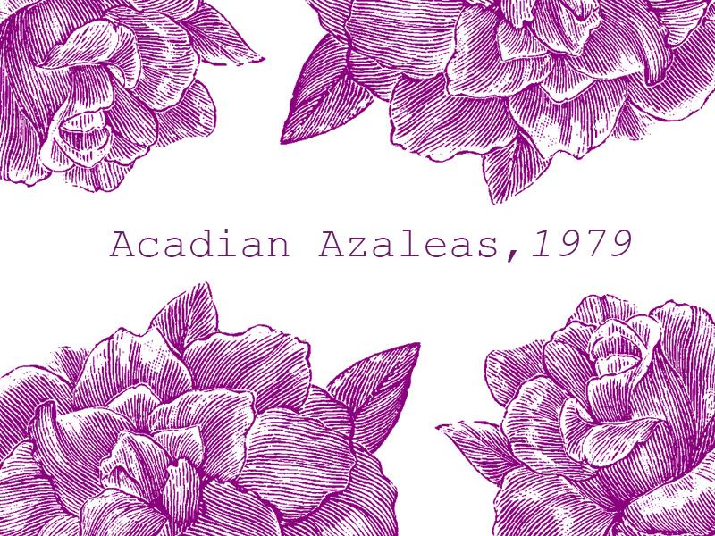 azelea-gradient-fb.jpg