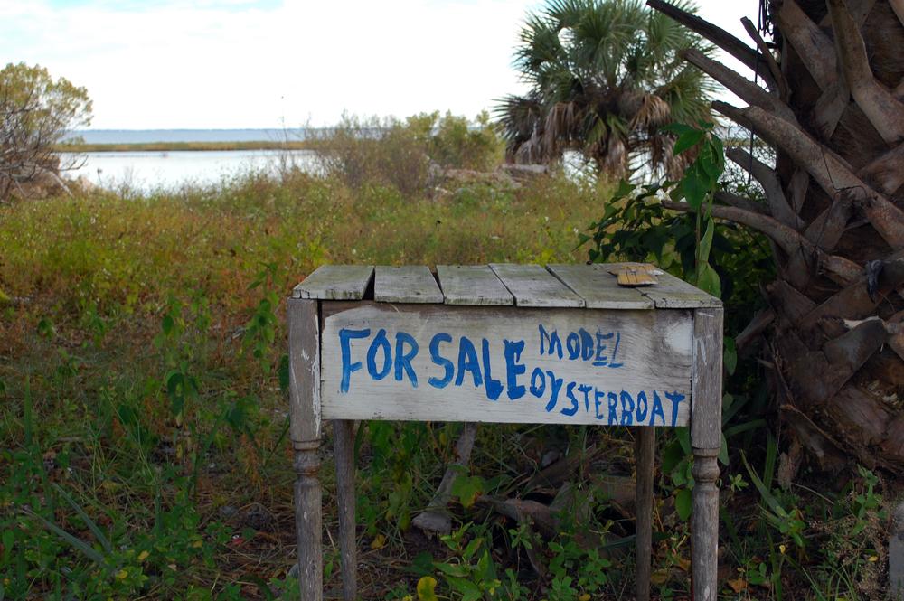 Florida 169 1.JPG