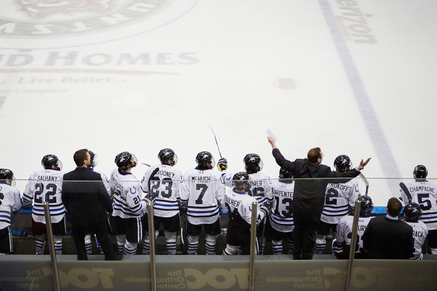 WCHA: Huntsville, AL - Hockey Capital Of The South