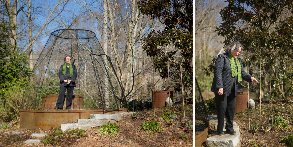 Christiane lauterbach in her atlanta garden, complete with custom tomato-growing cage (it keeps the critters off).
