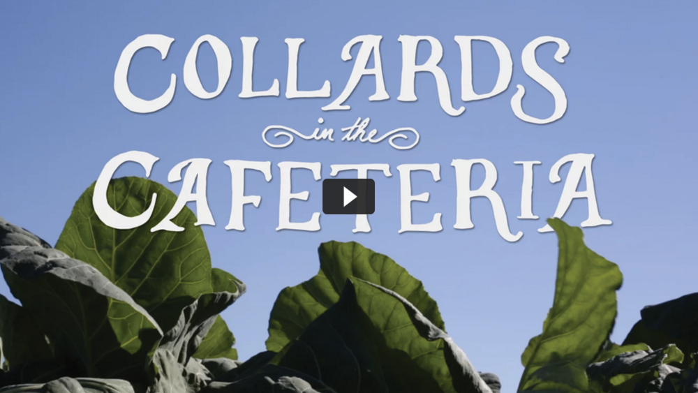 collards-header.png