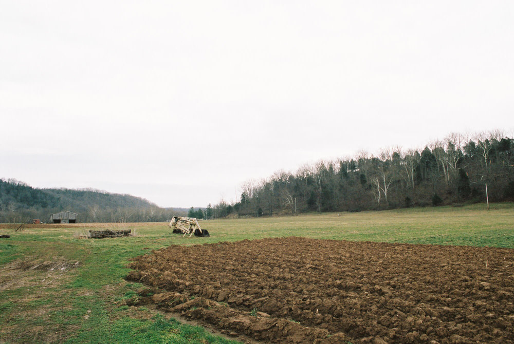 mary's_farm_1.jpg