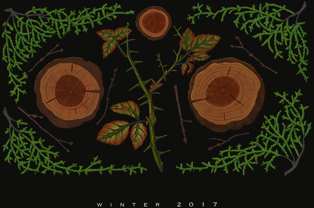 winter-2017.jpg