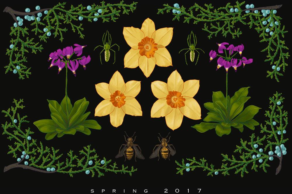 spring-2017.jpg
