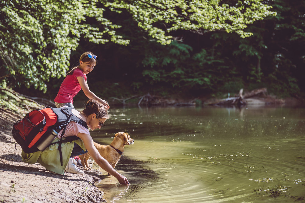 Family_Dog_River_GettyImages.jpg
