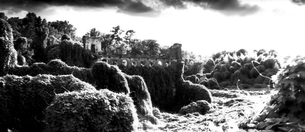 Joshua Gibson - landscape.jpg
