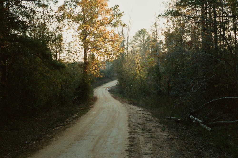 Near Stewart Alabama.jpg