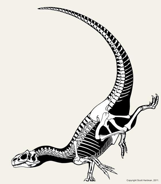 allosaurus_handstand.jpg