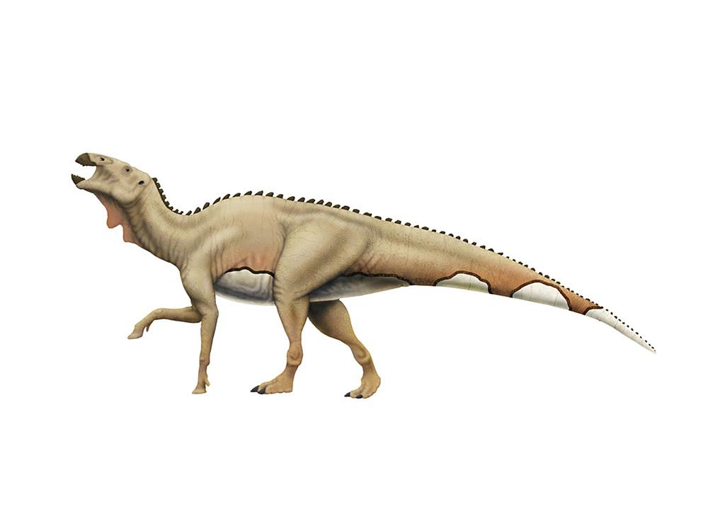 edmontosaurus dinosaur king - photo #30