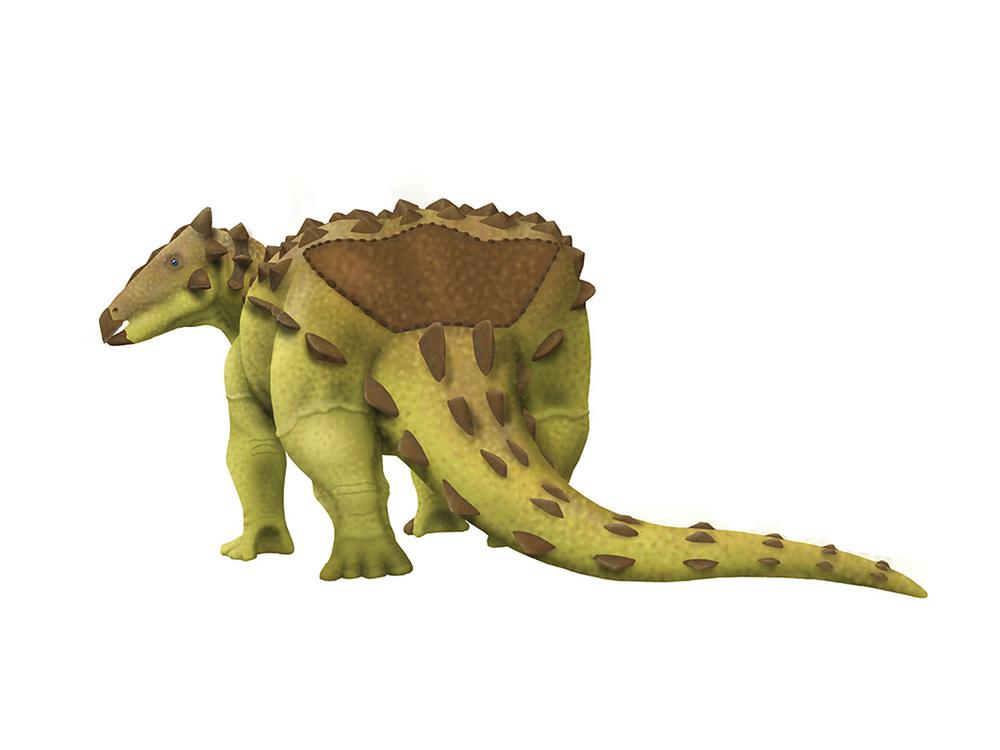 Niobrarasaurus.jpg