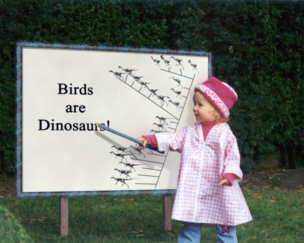 Anna teaching evolution.jpg