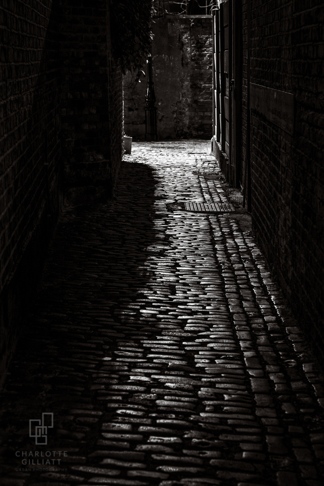 Shadow Alley