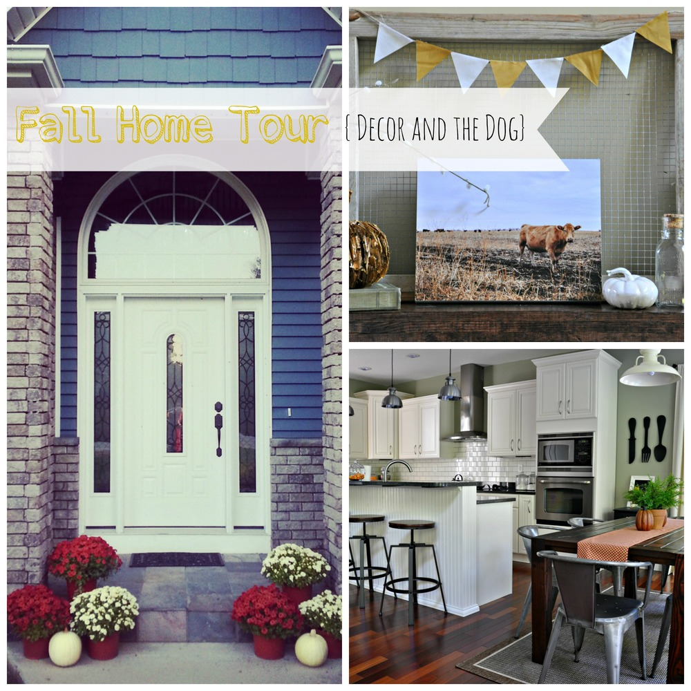 Fall home tour modern and fresh decor and the dog for Modern fall home decor
